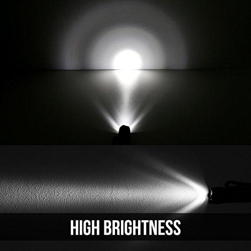 LE 2er Set Superhelle LED Taschenlampe, 14 LED, inklusive 6 AAA-Batterien, Camping Handlampe - 2